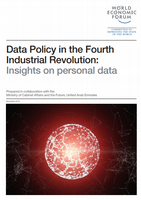 Data Policy in the Fourth Industrial Revolution: Insights on personal data