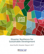 Disaster Resilience for Sustainable Development